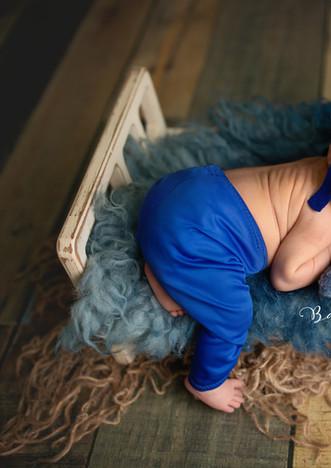 Skyrus Newborn 04.jpg