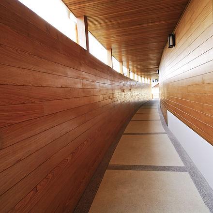 modern hotel wooden walkway.jpg