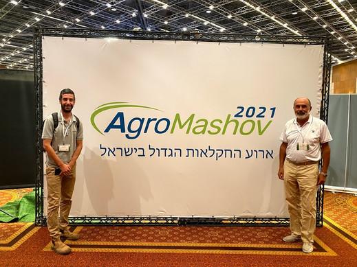 Агро Машов - сельхоз. выставка
