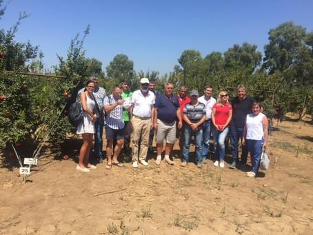Аграрии Полтавы посетили фруктовые плантации в долине Ахула