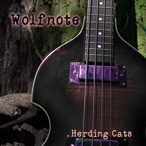 Herding cats, 12 track debut album