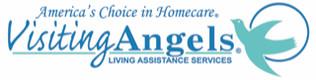 VA-Logo-Linear-w_AmChoice-.jpg