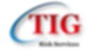 TIG risk services.png