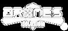 Logo DS - Branca Transparente - Marca Re