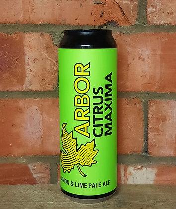 Citrus Maxima – Arbor – 4% Lemon & Lime Zest Pale