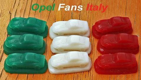 Scritta Opel fans.jpg