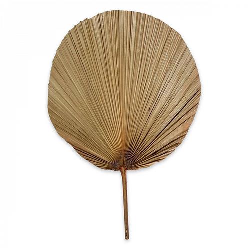 Eventail plissé en feuille en bambou