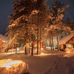 Finlande - Découverte de la Taïga