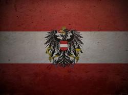 Flag 11