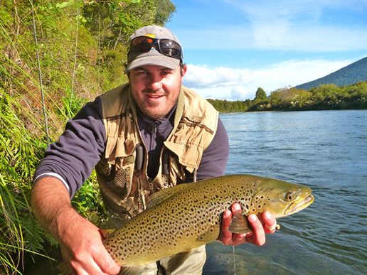 Brown Trout Taupo.jpg
