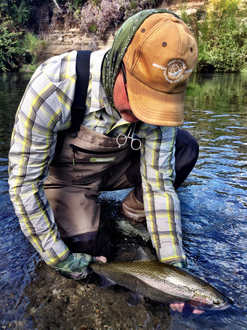 Brown Trout Fly Fishing.jpg