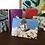 Thumbnail: Greeting Cards | Dreamscapes