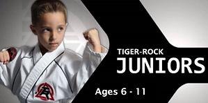 Tiger Rock Martial Arts Juniors