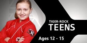 Tiger Rock Martial Arts Teens