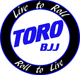 BJJ Greensboro and High Point, NC