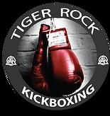 Tiger Rock Martial Arts Kickbox Near Me
