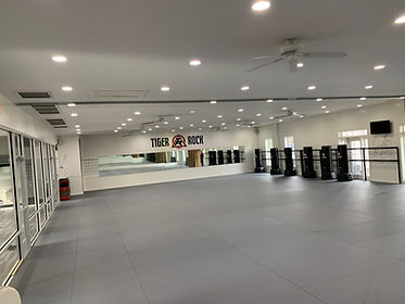 Brazilian Jiu-Jitsu (BJJ) Near Me