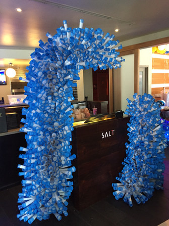 Entrance Display - Salt 7
