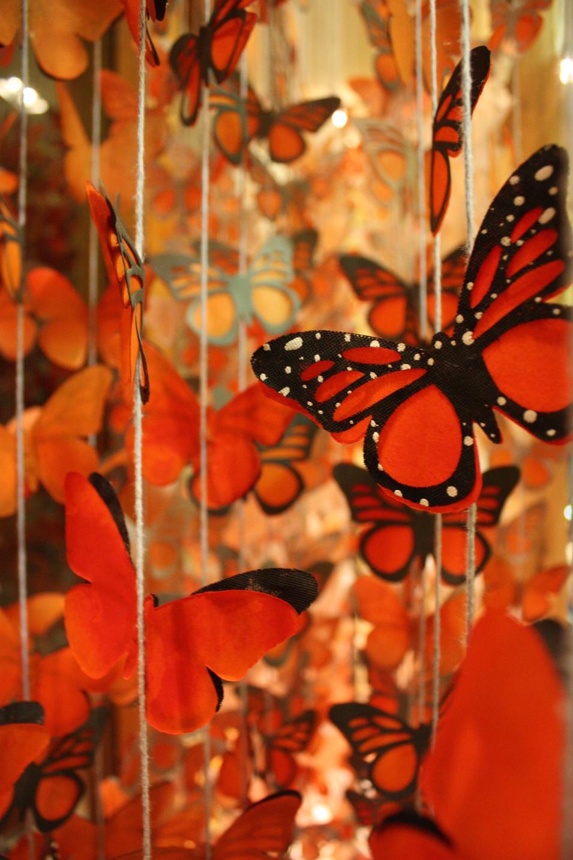 Monarch Window - Anthropologie