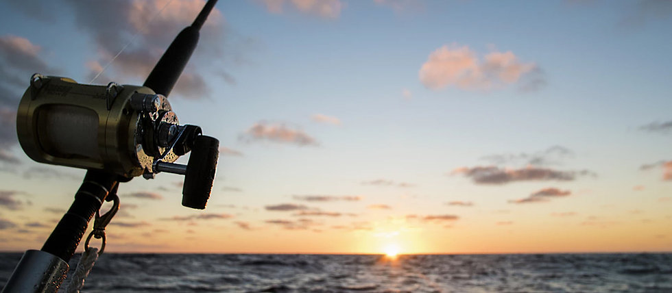 10-best-saltwater-fishing-rods-review-in