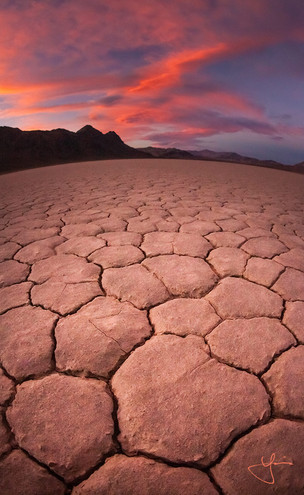 Desert Leather