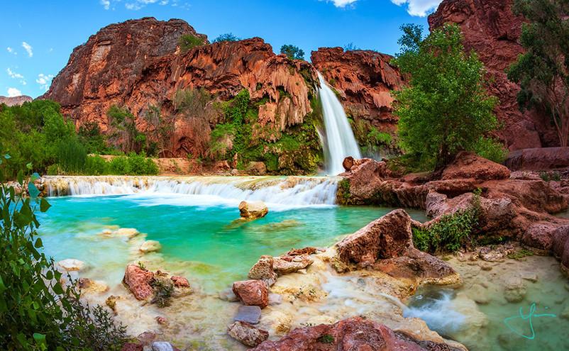 Arizona Tropics