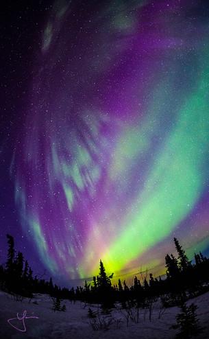 Aurora Falling