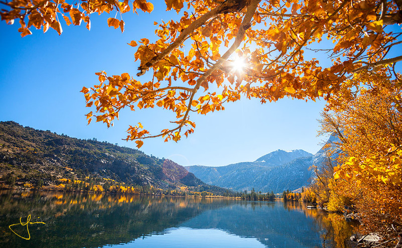 Golden Colors at Silver Lake