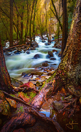 Reflections at Bridalveil Creek