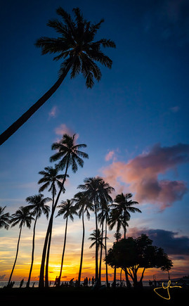 Silhouette of Paradise
