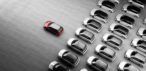 Vehicle Fleet Pic.jpg