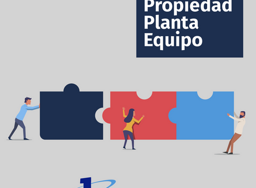 C-6 PROPIEDADES, PLANTA Y EQUIPO