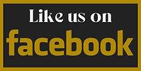 2021_SAsianWeddings_SocialBox_FaceBool.j