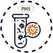 PM5.jpg