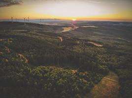 Ein Sonnenuntergang im Binger-Wald