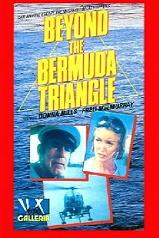 beyond the bermuda triangle.jpg