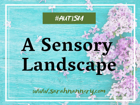 A Sensory Landscape