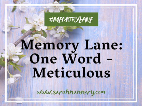 Memory Lane: One Word - Meticulous