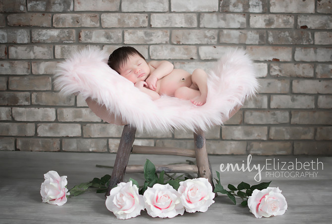 Baby Willow's newborn session.