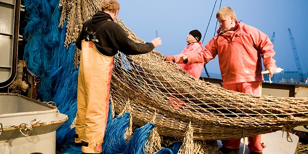 VOLZET - workshop - preus op onze Noordzeevis - 60€