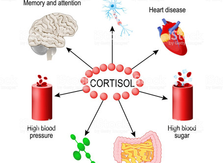 Cortisol...the ups and downs and what they mean to you!