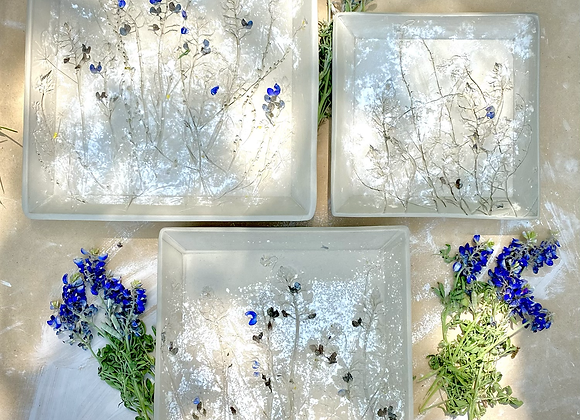 PREORDER Bluebonnets Square plate set of 3