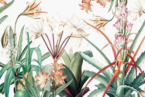 Botanical | chelsea garden