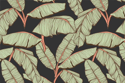 Leaves   south pacific