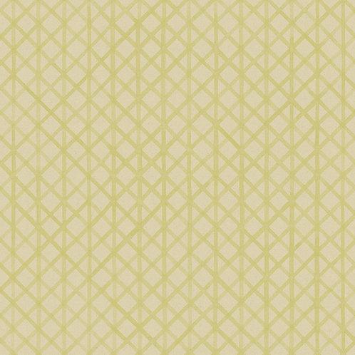 No. 6   linden green