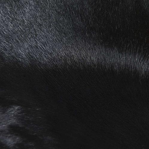 Catalina | black