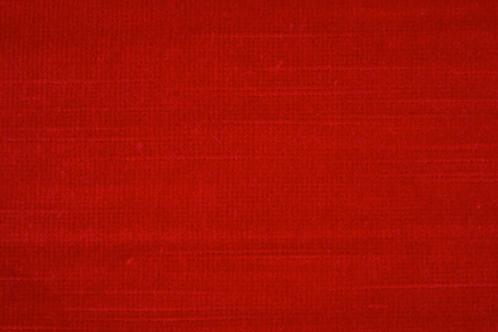 Canterbury Velvet | redcurrent