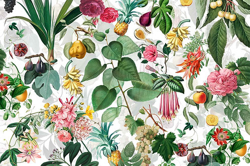 Botanical   pride of place