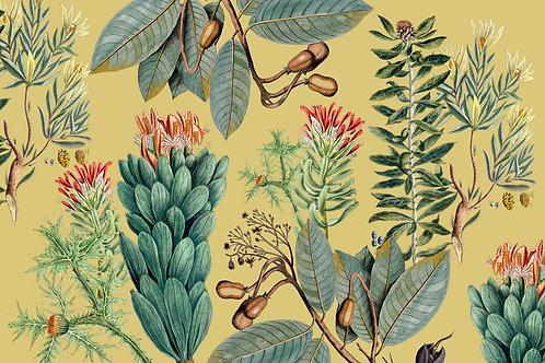 Botanical | cedarburg in yellow
