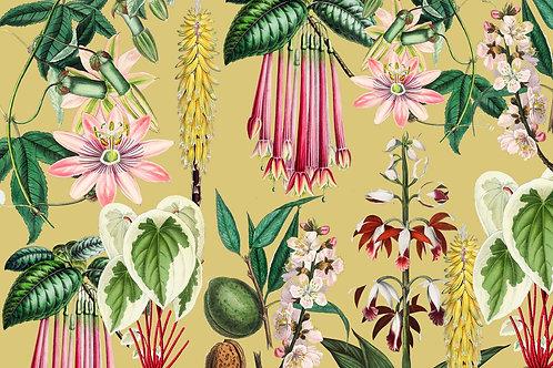 Botanical | southern belle